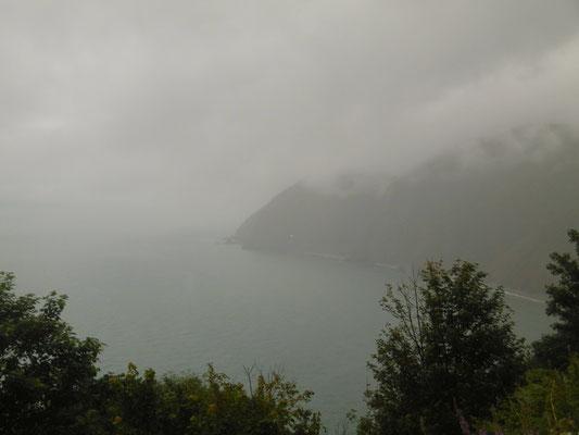Nebel + Nieselregen