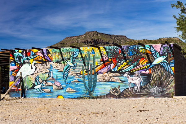 Graffiti, Baja, California, Mexico