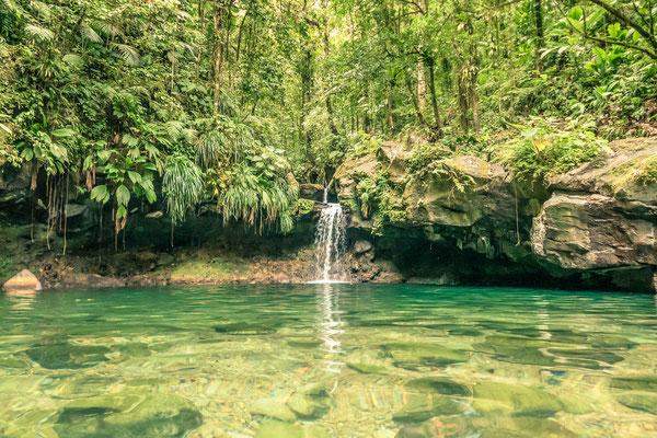 Bassin Paradise  - guadeloupe