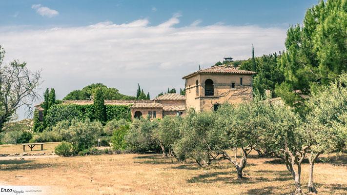 Abbaye de Sainte Croix - Garrigae - Salon de provence - Aix en provence - Marseille - Avignon