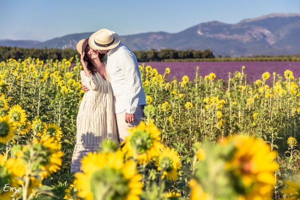 Jeune couple enlacé dans un champs de tournesol et de lavande à valensole