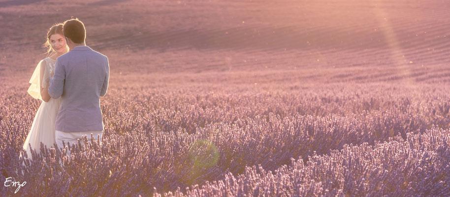 Jeune marié dans un champs de lavande