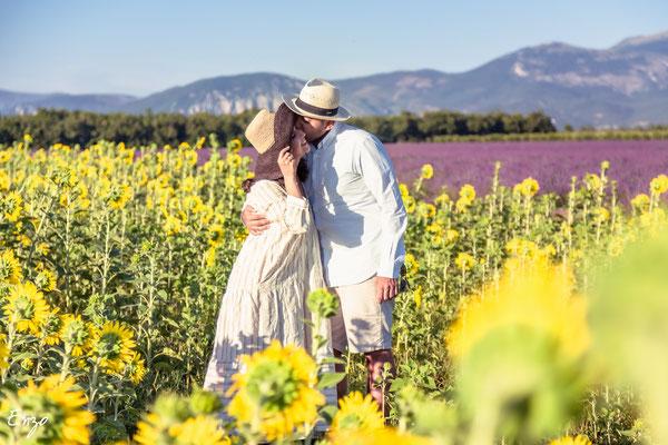 Jeune couple qui s'embrasse dans un champs de tournesol et de lavande à valensole