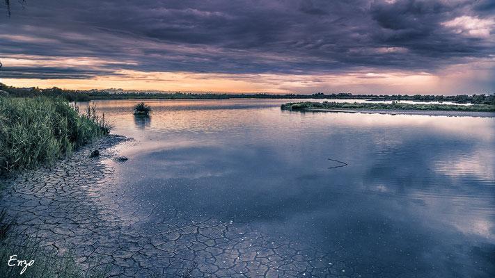 Camague - parc ornithologique camargue pont de gau - Coucher du soleil - 035