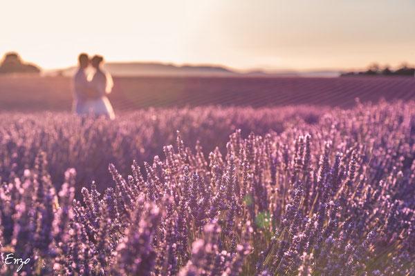Flou sur Jeune marié dans un champs de lavande à valensole avec un effet flou