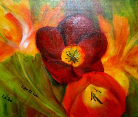 Tulpen, Acryl 40 x 60