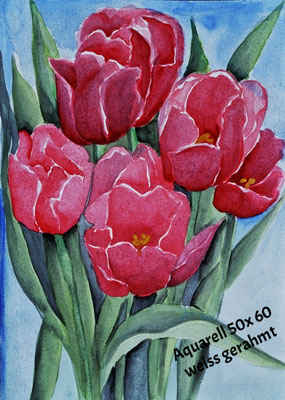 Tulpen_Aquarell 40 x 60 mit weißen Rahmen