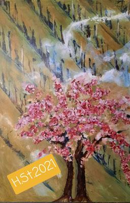 Kirschbaum im Weingarten