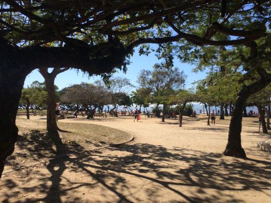 いよいよ最終日! 夜更かししたのに、とても爽やかに起きれました。 尚美さんが近くのフラメンゴ海岸へ連れて行ってくださいました。