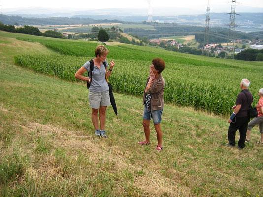 Liebliche Landschaft um Leibstadt