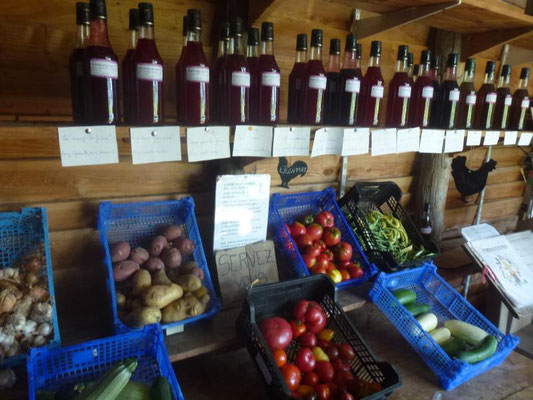 La vente de produits bio du jardin