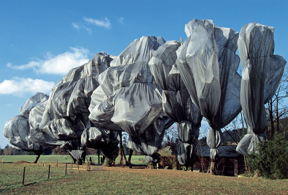 Christo und Jeanne-Claude, Wrapped Trees, Fondation Beyeler and Berower Park, Riehen, Switzerland, 1997-98 // Photo: Wolfgang Volz // © 1998 Christo