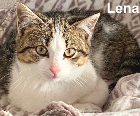18.1.21 Lena
