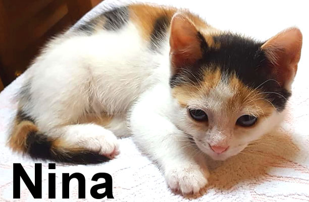 26.6.21 Nina