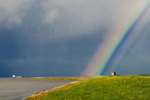 Die Reise zum Regenbogen