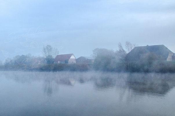Nebelmorgen 2014030-0383