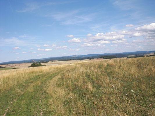 Natur pur mitten in Hessen
