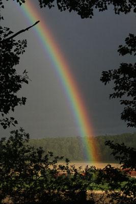 Regenbogen über Ringelshausen