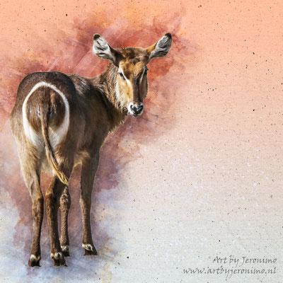 Digitaal kunstwerk van een Afrikaans hoefdier