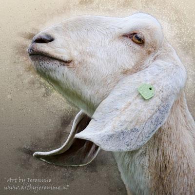 Digitaal kunstwerk van een Nubiaanse geit