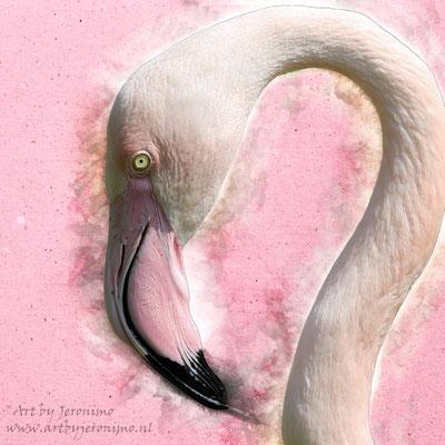 Digitaal kunstwerk van een flamingo (evt. ook beschikbaar als drieluik)
