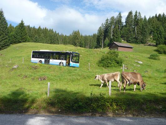 Bus zurück vom Kurhaus Voralp