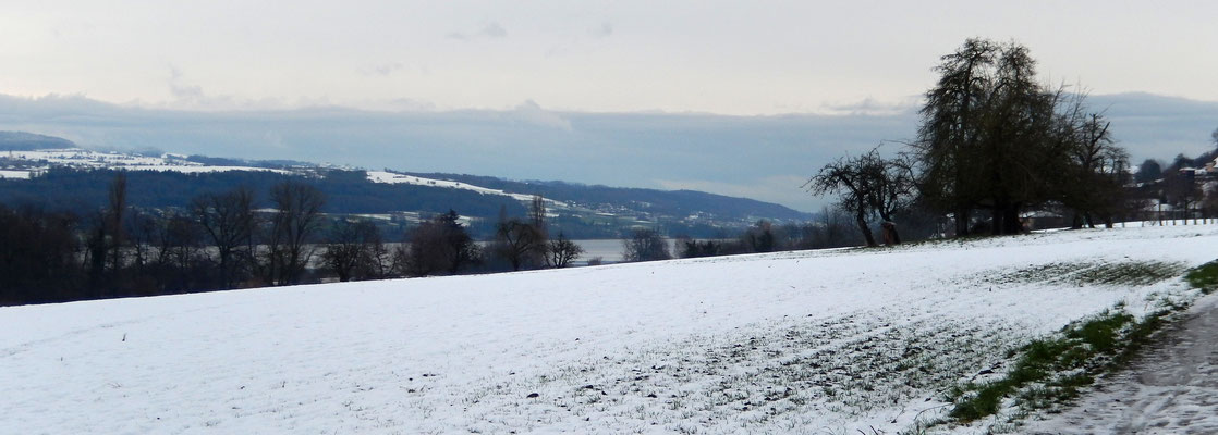 Hallwilersee - Blick Richtung Südost