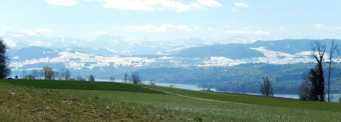 Aussicht auf Glarner Alpen