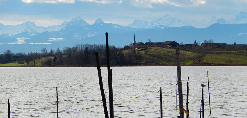 Seegräben mit Alpenpanorama (Grosseer- und kleiner Mythen links)