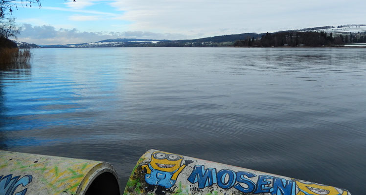 Hallwilersee Richtung Nord