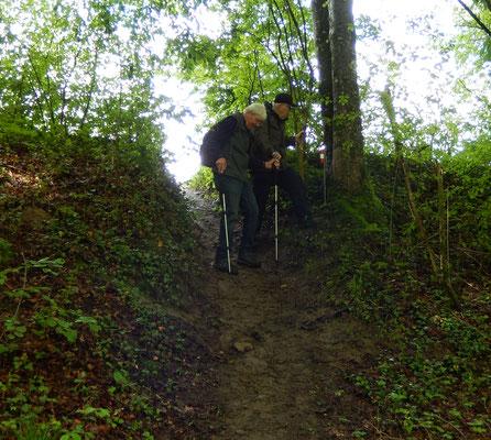 Steiler Abstieg für Wurf & Chnopf