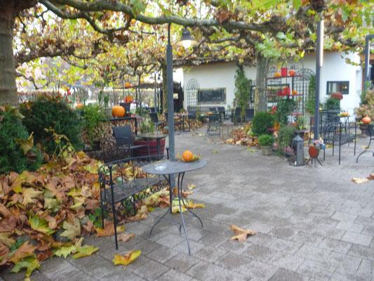 Buntes Herbstlaub in der Gartenbeiz