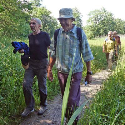 Goliath, Wurf, Kardan, und Neptun mit Fotograf Vento unterwegs nach Beinwil am See.