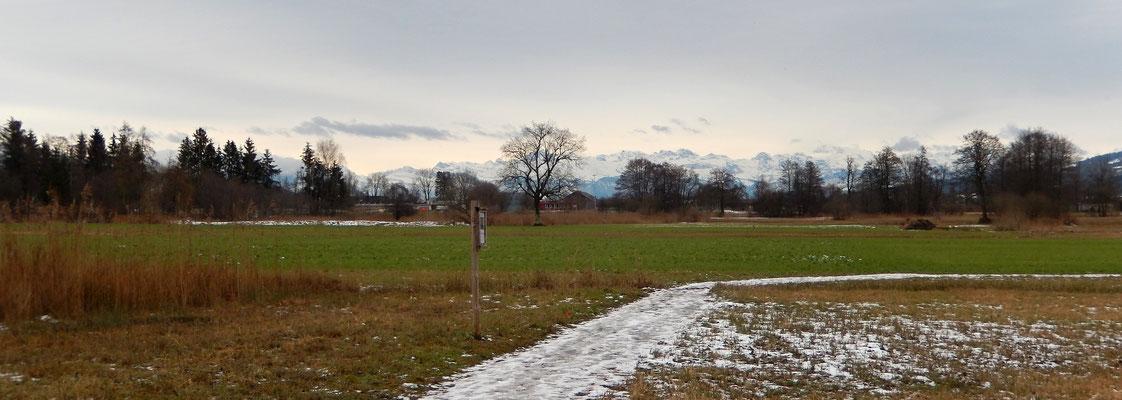 Heimkehr - Alpenpanorama mit Rigi