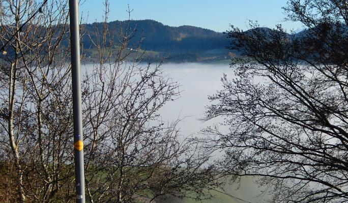 Nebelmeer über Adetswil