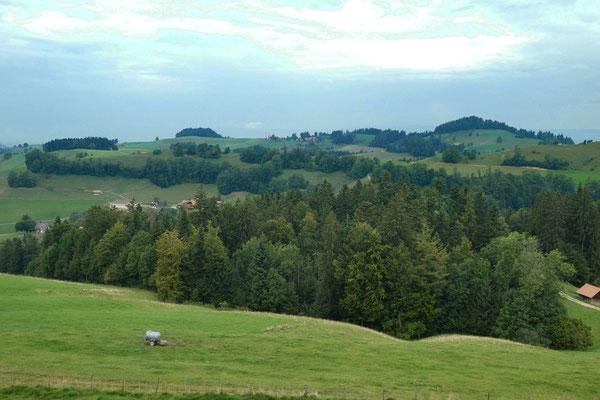 Aussicht vom Tavel-Denkmal - Hügel