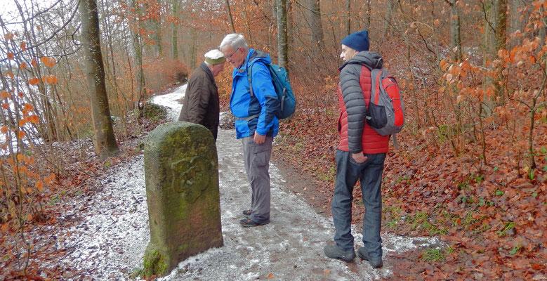 Tardo, Bison, Chlapf beim alten Berner Grenzstein