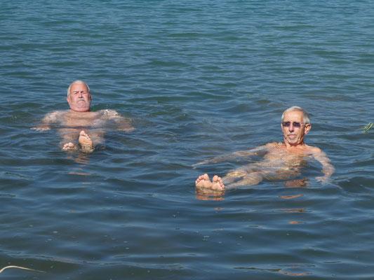 Schwimmer Zingg und Goliath.