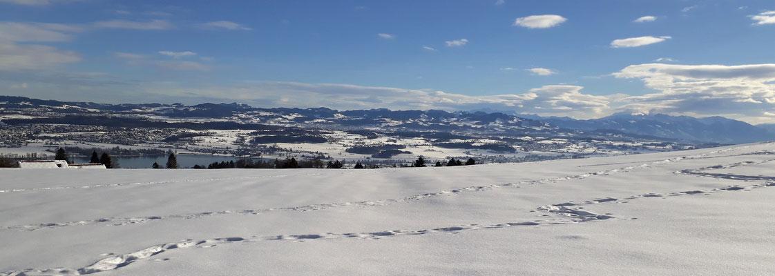 So wäre die Aussicht Richtung Schaffhausen bei schönem Wetter (am 21.Jan)