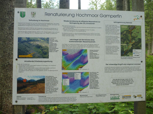Erläuterung zum Hochmoor Gamperfin