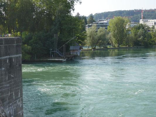 Am Rhein so schön