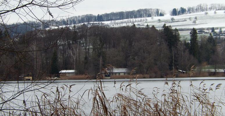 Ziel in Sicht - Tardo's Villa am See (rechts)