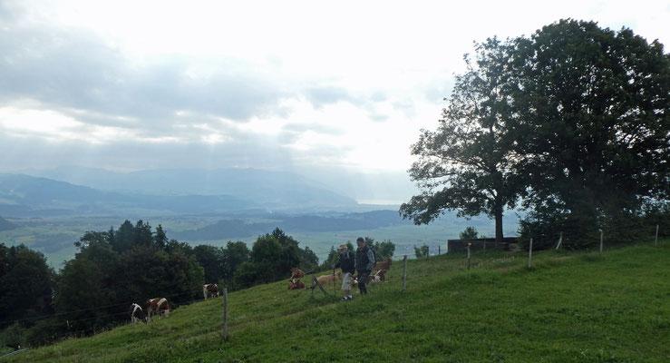 Aussicht vom Tavel-Denkmal - Pflueg & Yeti