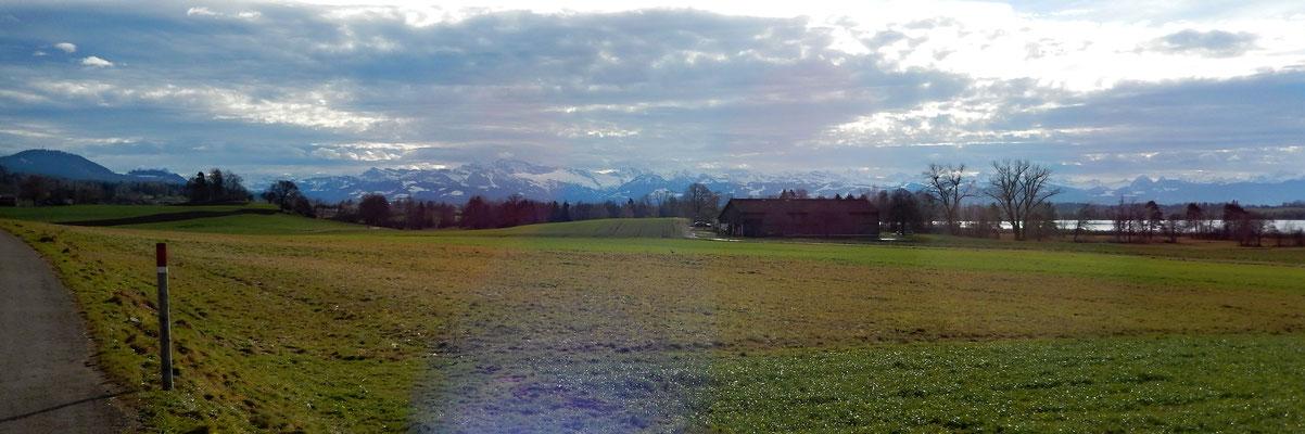 Pfäffikon Süd - Rossriet