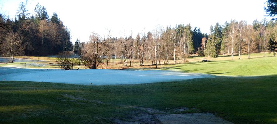 Raureifer Golfplatz Hittnau