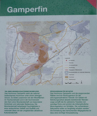 Wissenswertes zu Gamperfin