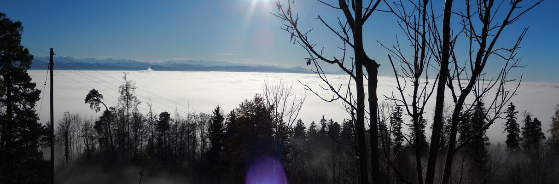 Über dem Nebelmeer!!