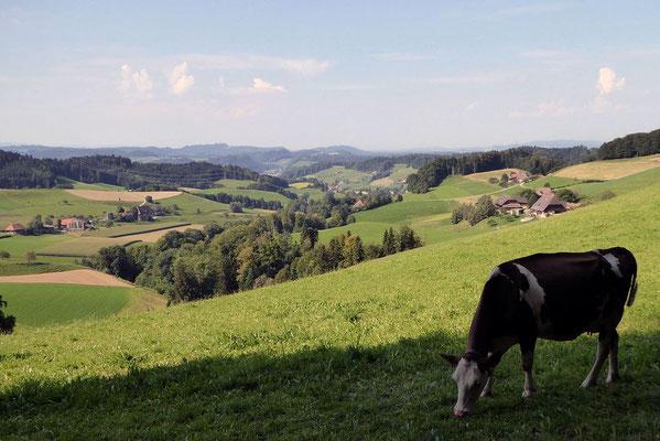 Emmentaler Hügel