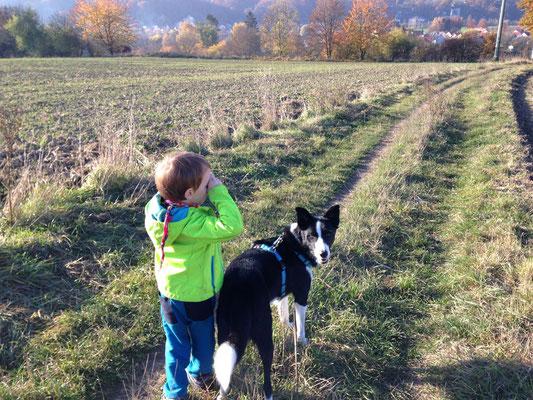 Es gibt kaum etwas schöneres, als einen gemeinsamen entspannten Hundespaziergang