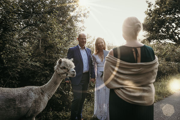 Hochzeit Norddeutschland Alpakas Hochzeitsfotograf Freie Trauung